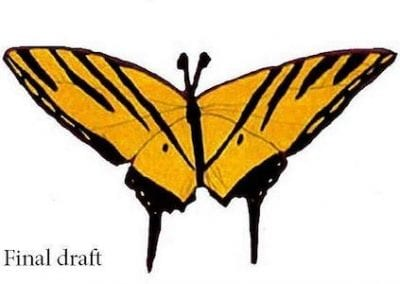 Austin's Butterfly: The Criticality of Concrete & Specific Feedback